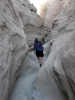 April 4 - 7 » Anza Borrego (solstice cave, bighorns, pictographs, more...)